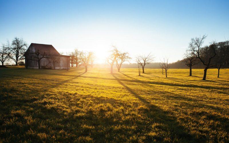Photo by Philipp Reiner Unsplash Eduquer Avec Sagesse soleil levant paysage ferme pature