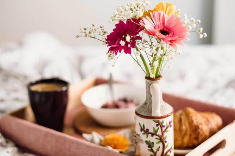 Photo by freestocks.org on Unsplash - Eduquer Avec Sagesse plateau petit dejeuner fleur