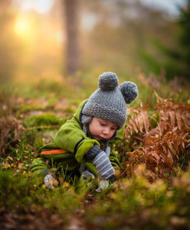 Eduquer Avec Sagesse - Photo by 🇸🇮 Janko Ferlič - @specialdaddy on Unsplash - Petit enfant dans l herbe en train de cueillir une herbe et observer avec attention